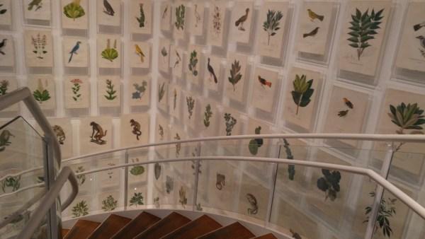 Uma das exposições do Itaú Cultural
