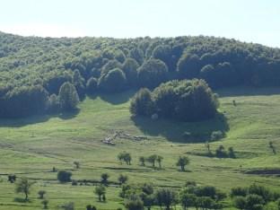 Village valaque Nymfaio (1)