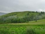 Region de Kusturica (2)