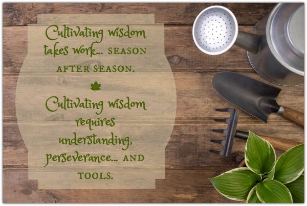 Cultivating Wisdom Requires Tools