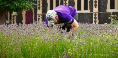Cultivate-London-Landscaping12