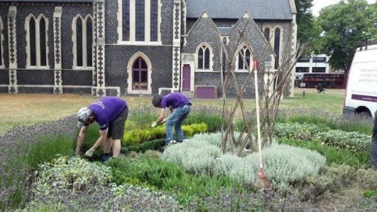 Cultivate-London-Landscaping8
