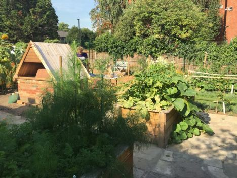 Cultivate-London-Salopian-Kitchen-Garden-August-2016_1047