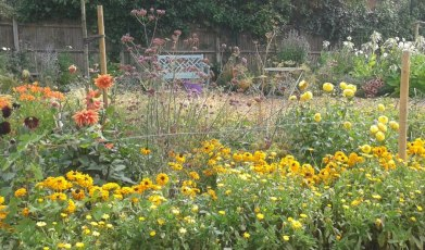 Cultivate-London-Salopian-Kitchen-Garden-Opening1