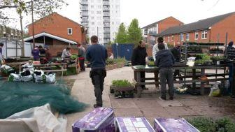 Cultivate-London-Salopian-Kitchen-Garden_1060