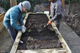 Cultivate London Urban Farm and Social Enterprise 50