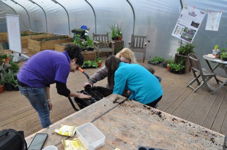 Cultivate London Urban Farm and Social Enterprise 67