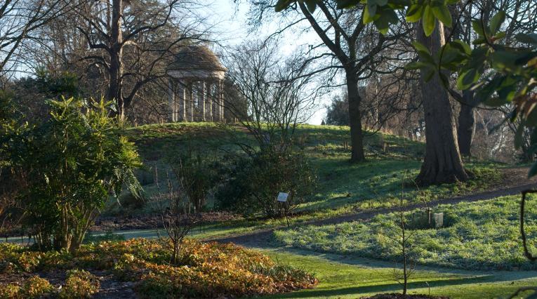 Reaching new communities at Kew Gardens