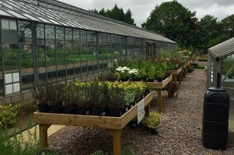 Meet our new supplier: Cutteslowe Nursery and Garden Centre