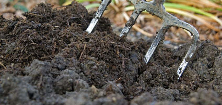 From the Oxfordshire Master Composters: Tips and Tricks