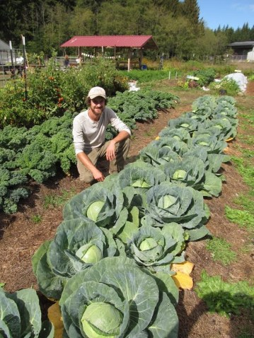Garden Manager, Kevin, with some big cabbages!