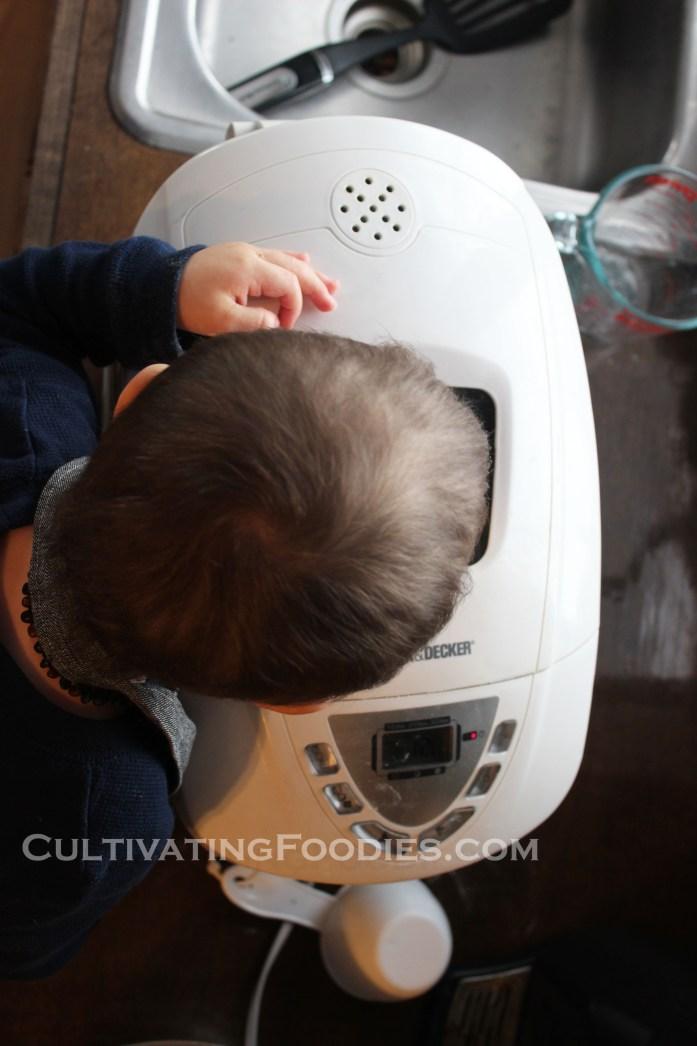 Little Chef peeking in bread maker