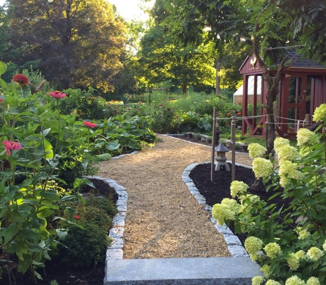 Rocking it in Retirement – My best Vegetable Garden Ever