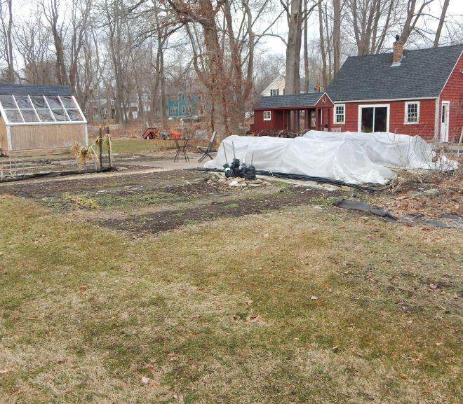 Garden Diary – February 25, 2016