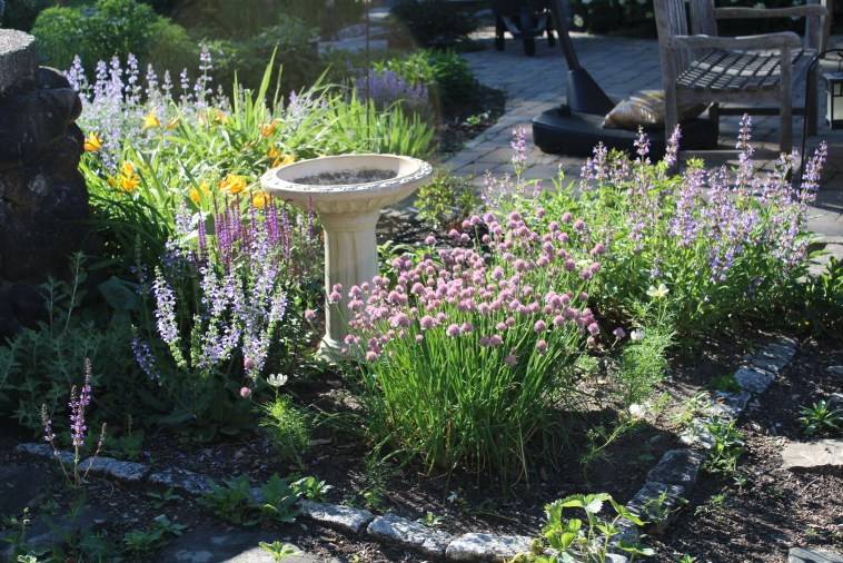 THE SAGE QUADRANT IN THE HERB GARDEN