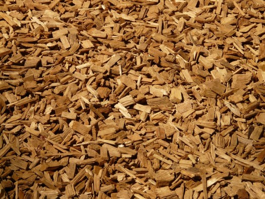 Le copeaux de bois peuvent servir de base de substrat pour faire pousser des champignons sans kit !