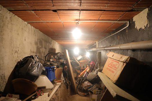 Une cave est lieu adapté pour commencer une culture de champignon. La température et humidité constance sont de valeur pour faire pousser des champignons.