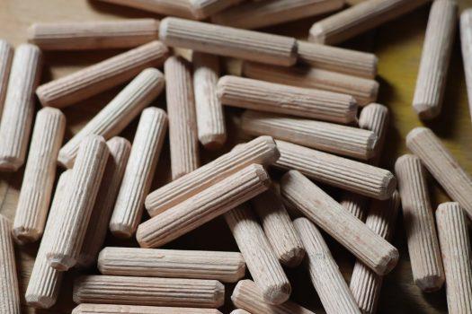 Les goujons de bois sont un substrat parfait pour les champignons décomposeurs primaires.