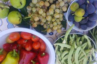 Cultivos da época – Plantar e colher em Outubro