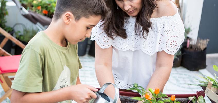 Horta na escola – Os 7 maiores benefícios!