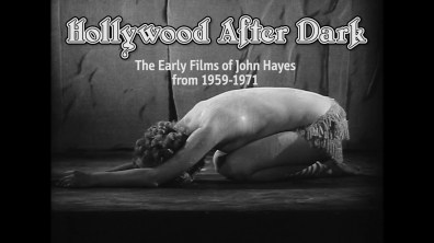 Hollywood After Dark Feature