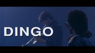 Dingo Trailer