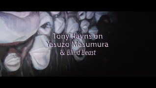 Blind Beast Tony Rayns interview