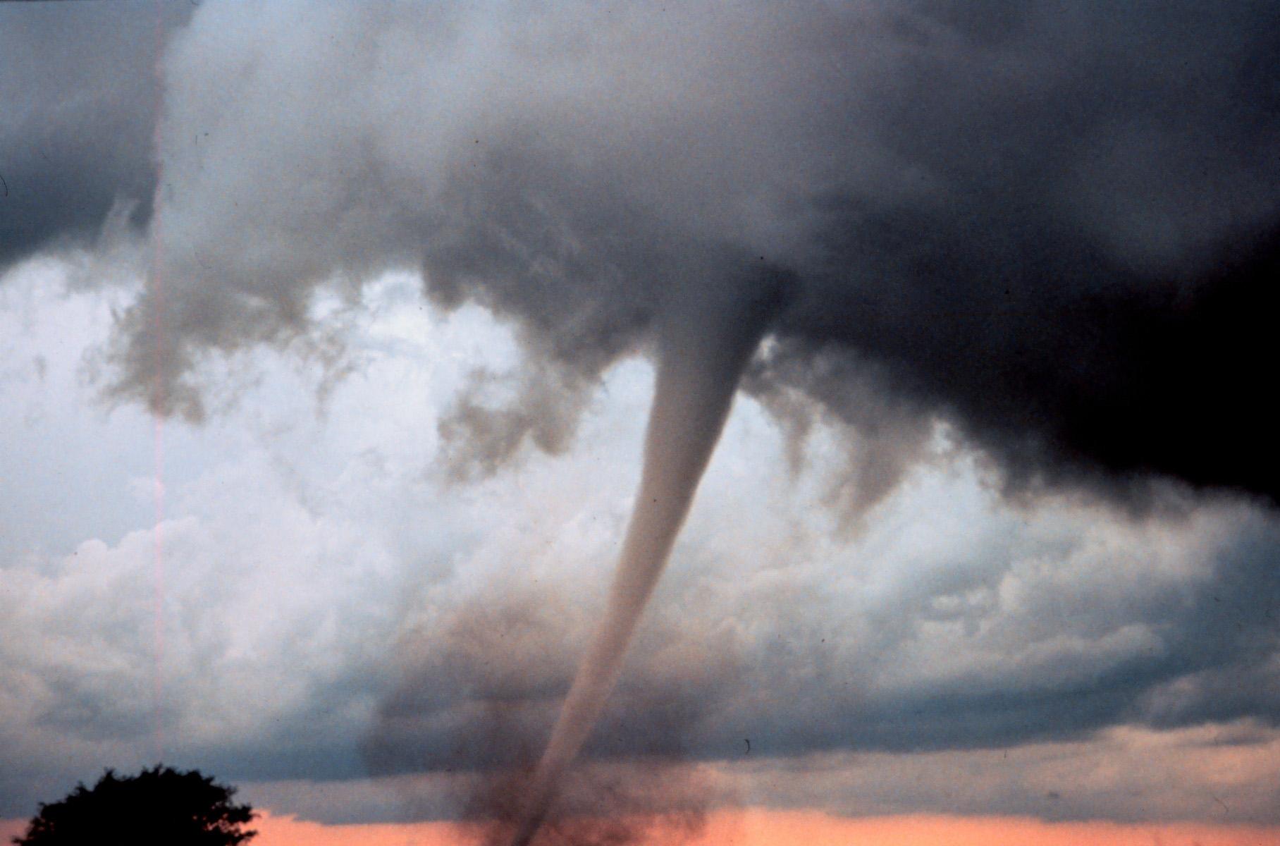 Che cos il viale dei tornado