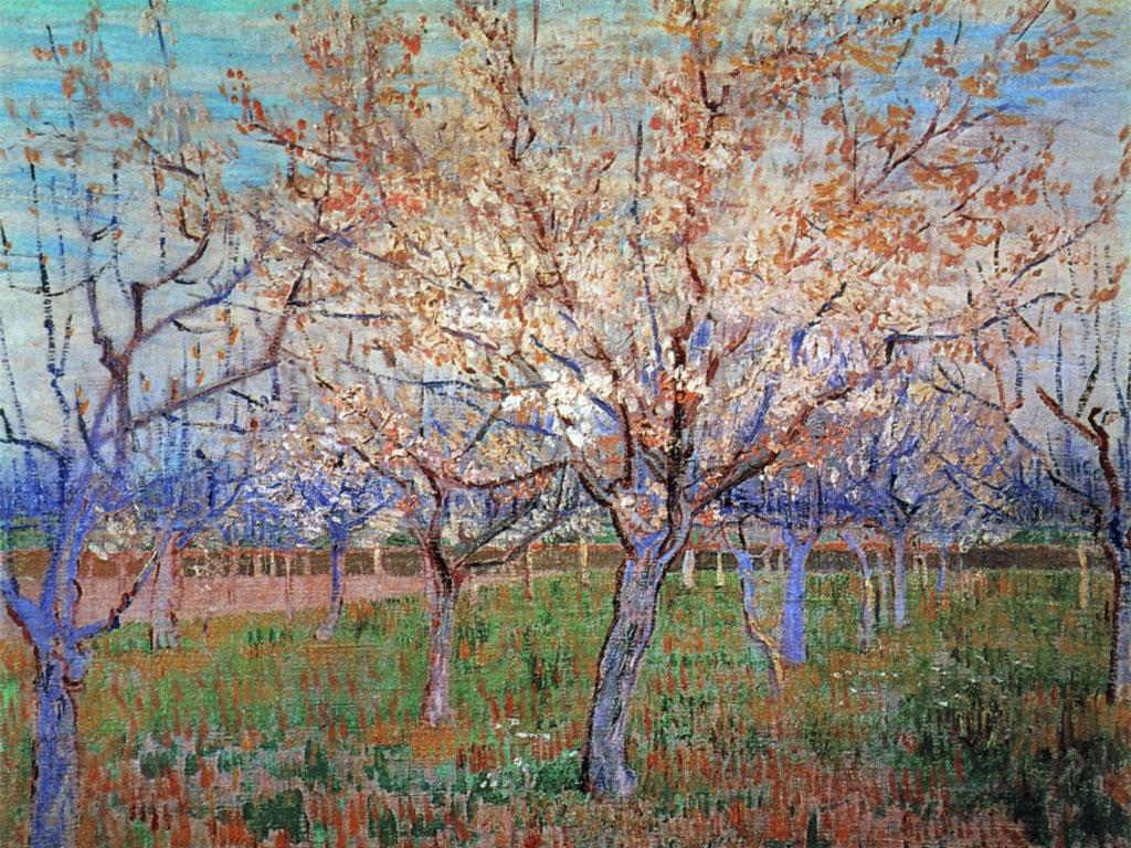 Albicocchi in fiore  Van Gogh