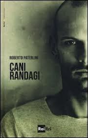 Cani Randagi