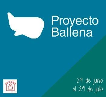 Proyecto Ballena 350x320