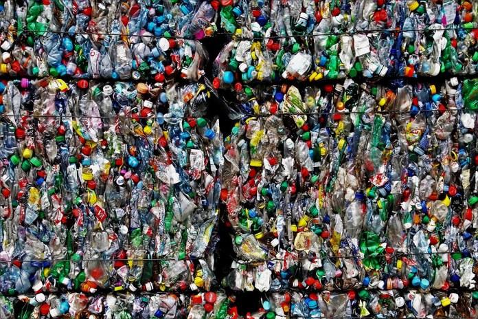 los desechos plasticos son un gran problema tanto para el medio ambiente como para animales y personas
