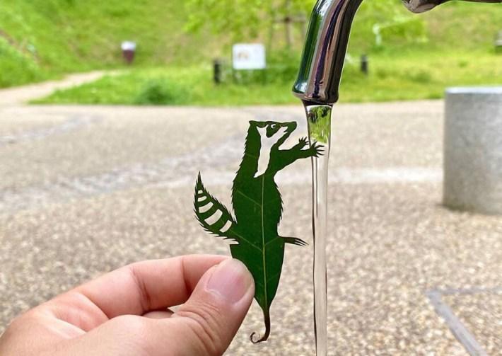 lito leafart hojas miniatura 14