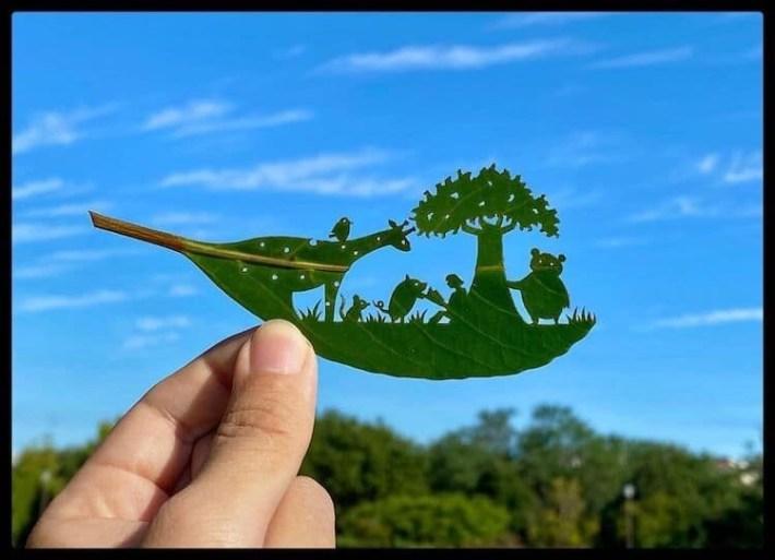 lito leafart hojas miniatura 18