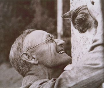 Hermann Hesse los placeres de la vida