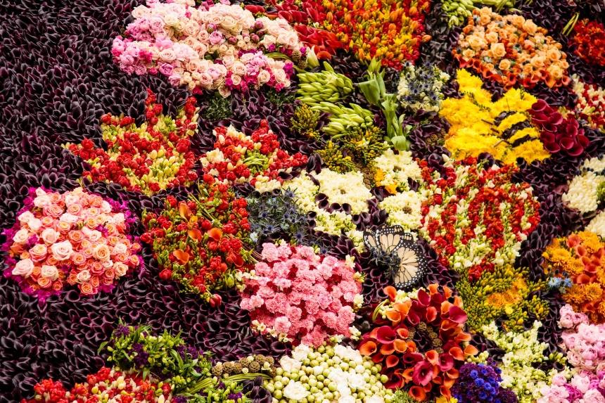 flowers culturainquieta2