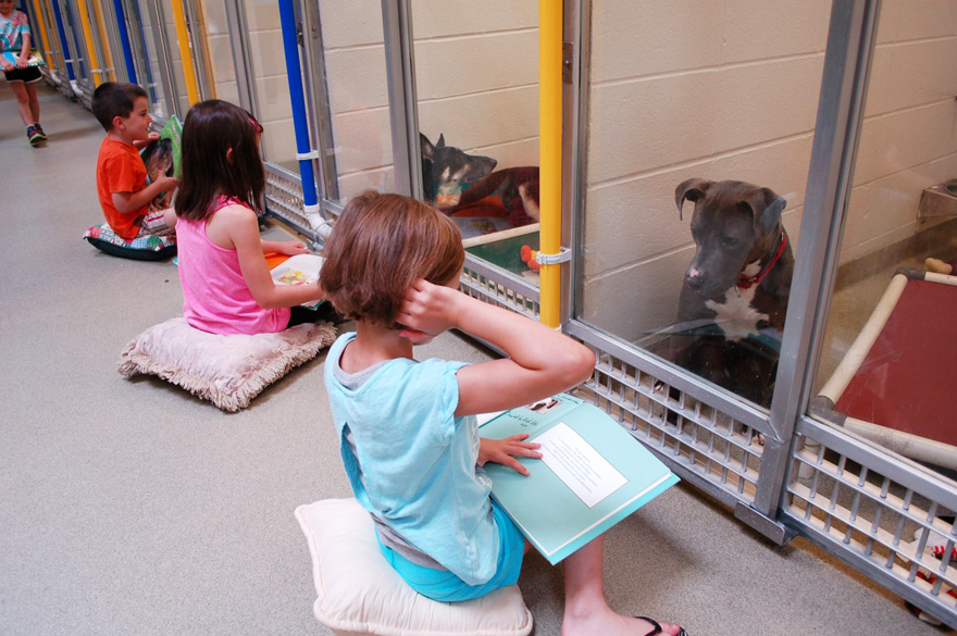 kids read shelter dogs human society of missouri 3