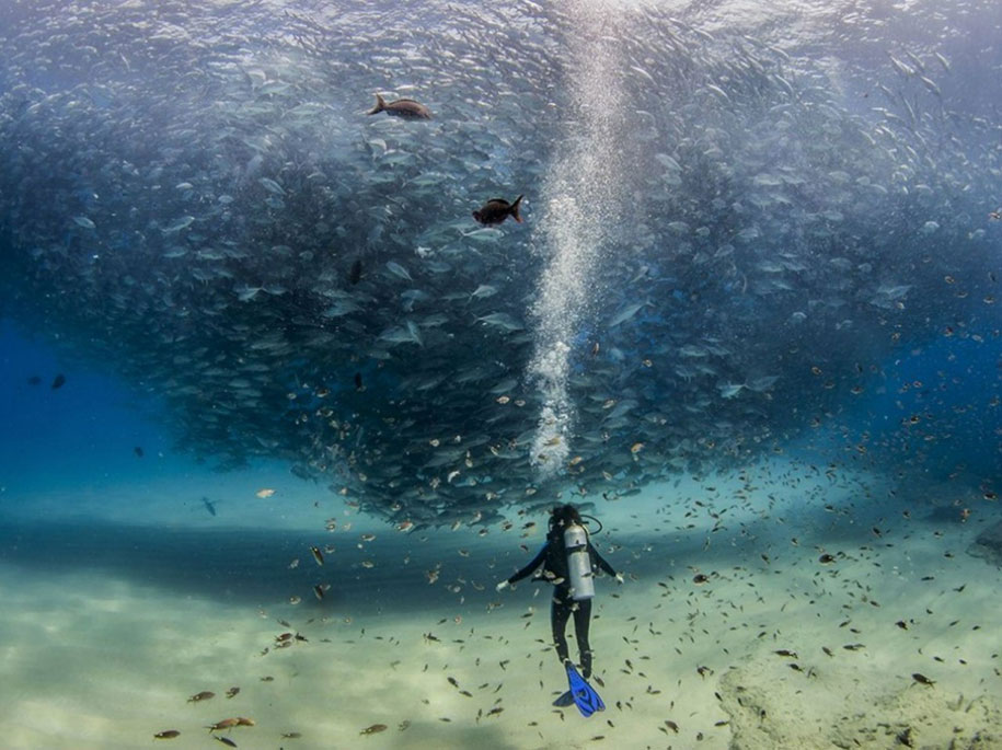 National Geographic best Photos 2015 15