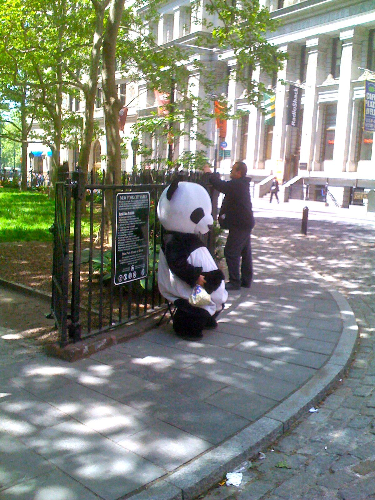 Panda Man takes a load off downtown