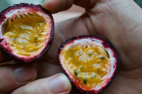 Maracuya (passion fruit)