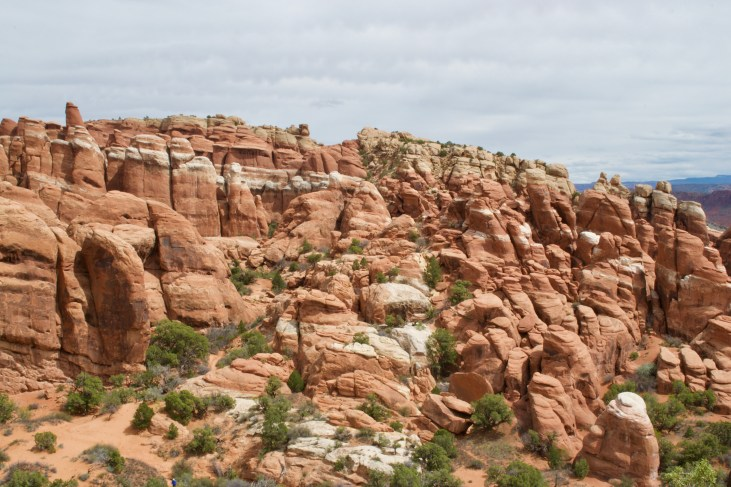 Fiery Furnace - you can only hike inside if you have a permit or hike with a guide. We just took photos from the lookout above.