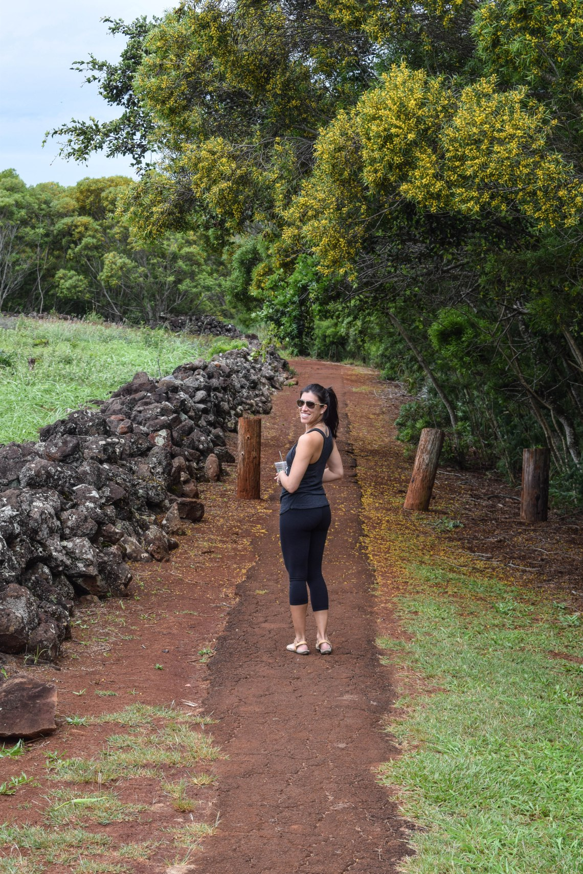 North Shore Heiau