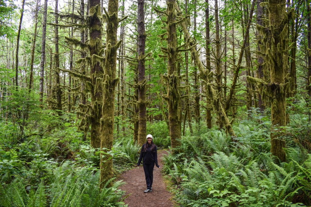 Lime Kiln Trail, Washington, Mountain Loop Highway