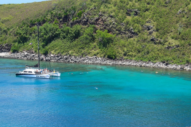 Snorkeling at Honolua Bay on Maui