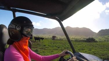 Kipu Ranch2