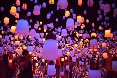 Pink Lanterns2