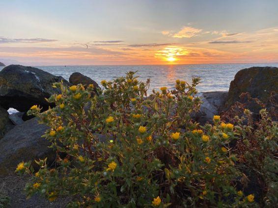 Dungeness Sunset1
