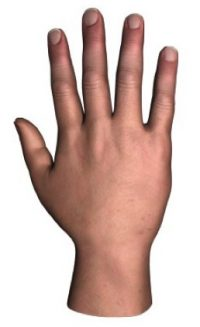 Image of right hand.