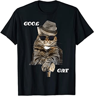 persian cat Funny  persian cat with sunglasses and hat,  Cool Cat pose