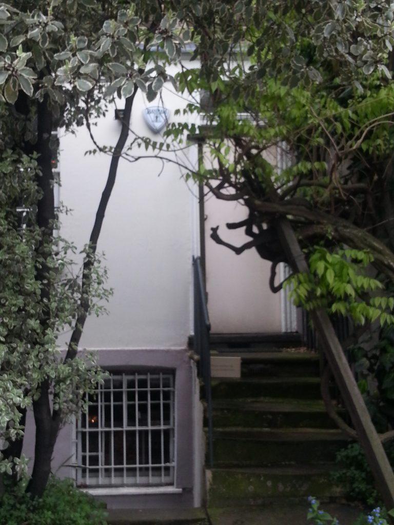 575 Wandsworth Road doorway hidden by overgrowth